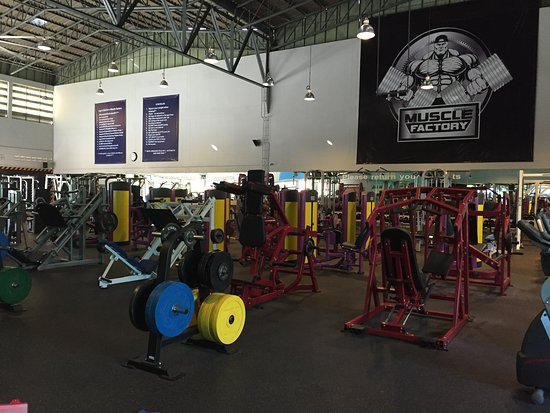 ‪Muscle Factory Bangkok‬