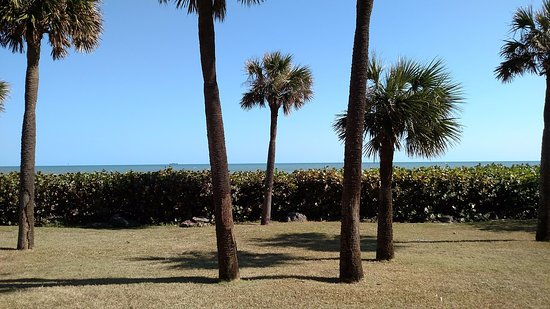 International Palms Resort & Conference Center Cocoa Beach: The view from our room.