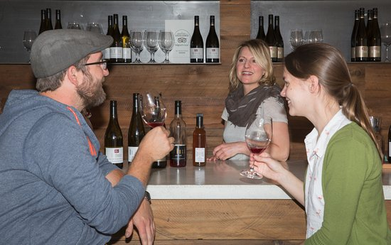 Appellation Central Wine Tours: Learning more about wine from the Gibbston Valley