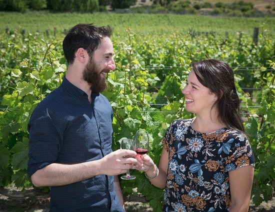 Appellation Central Wine Tours: Wine tasting among the vines