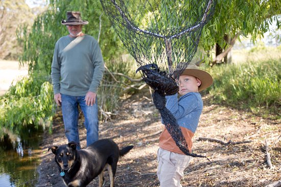 Bow Bridge, Australia: Mark and Max [grandson] catching the Marron for your lunch