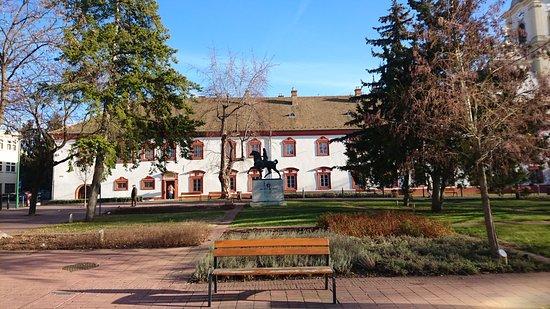 Gyongyos, Hungary: Gyöngyös - Ferences Rendhaz es Templom