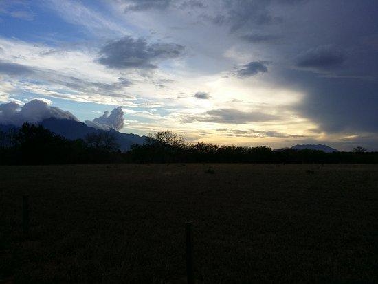 Mbuyuni Farm Retreat: 20161210_180445_large.jpg
