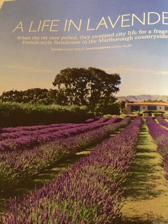 French Fields: Featured in magazine