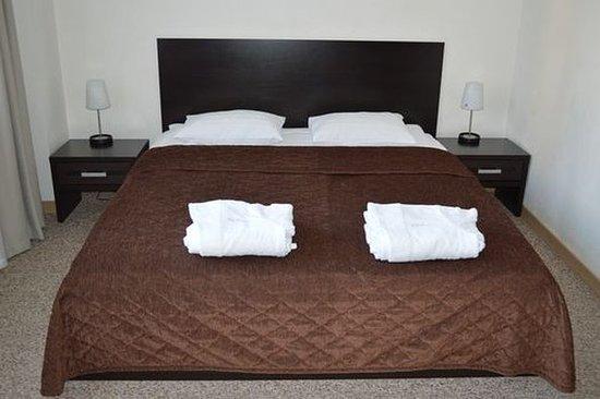 Avialuxe Hotel: Guest Room