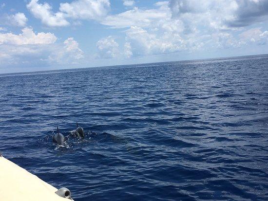 Mayotte Découverte : photo1.jpg