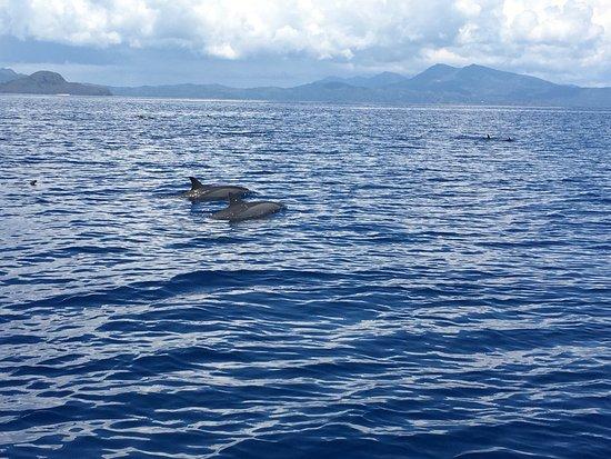 Mayotte Découverte : photo3.jpg