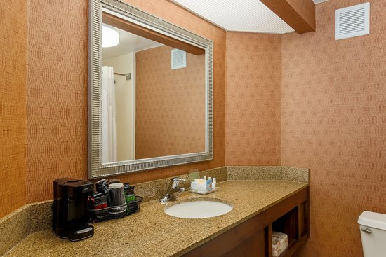 Holiday Inn Charleston-Mount Pleasant: Bathroom