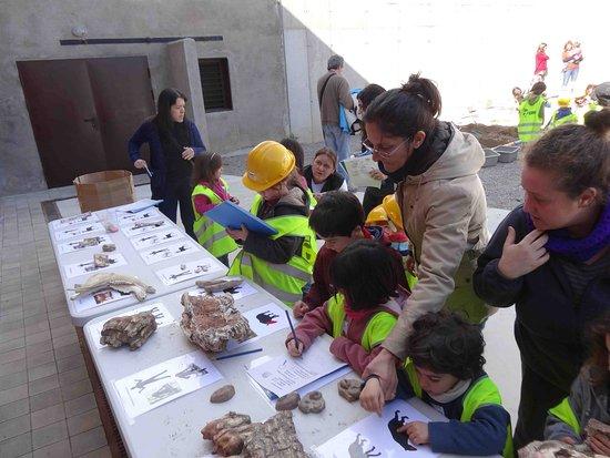 Centre de Restauració i Interpretació Paleontològica