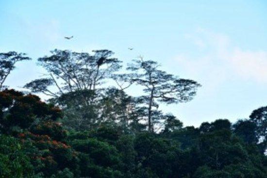Bilde fra Eagle's Residence
