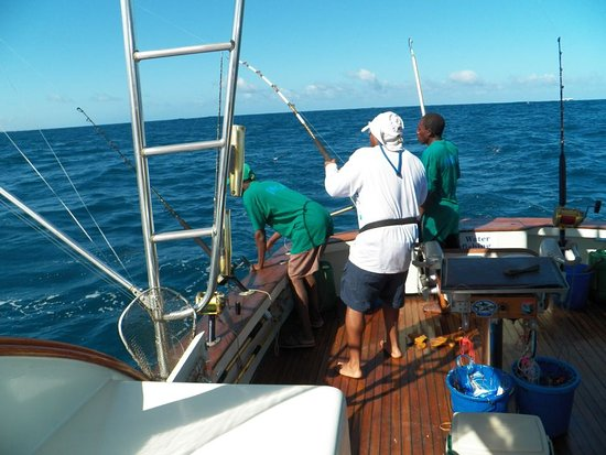 Deep Sea Fishing : Fighting a sailfish