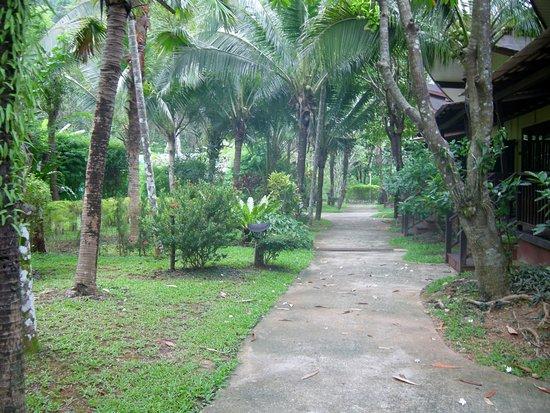 آو نانج فو بترا ريزورت صورة فوتوغرافية