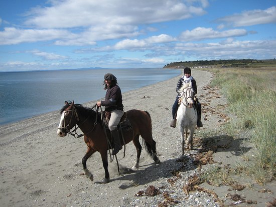 Kayak Agua Fresca: Ride back along the beach, a beautiful day in Punta Arenas!