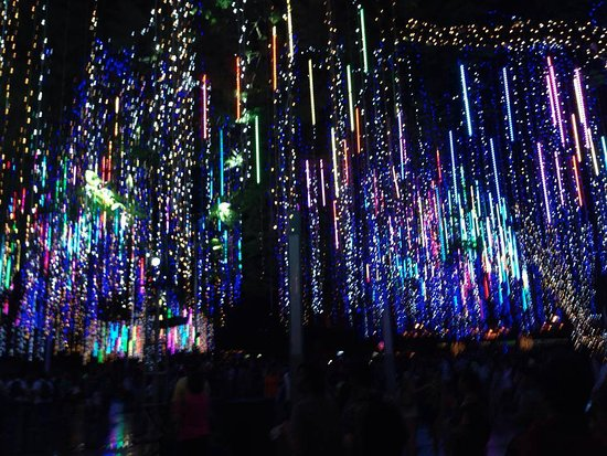 Ayala Triangle Gardens: Beautiful Light And Sound SHow