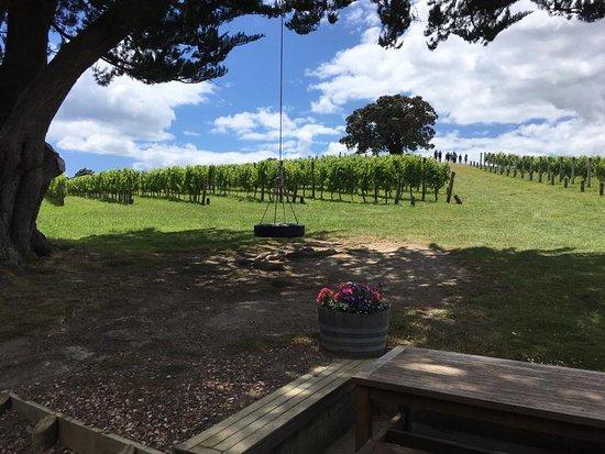 Ilha Waiheke, Nova Zelândia: great vineyard reviews