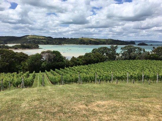 Ilha Waiheke, Nova Zelândia: beaches on a wine tour! Exceptional!