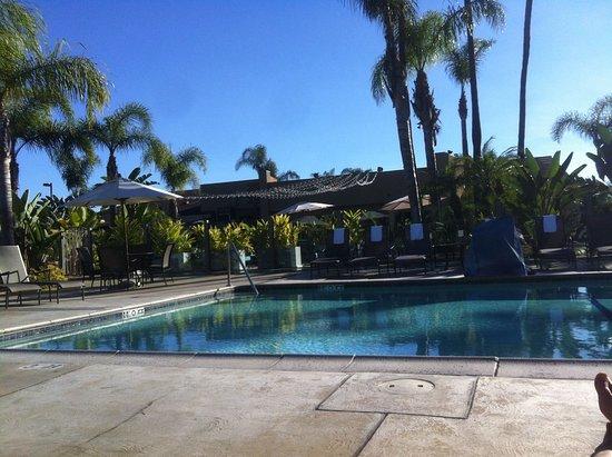 Holiday Inn San Diego-Bayside: Der Pool