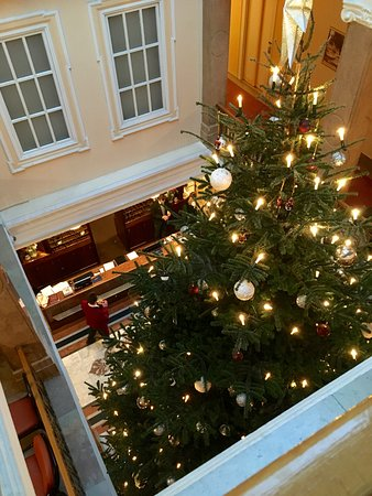 Christmas Tree Greets Guests