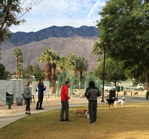 Palm Springs Dog Park