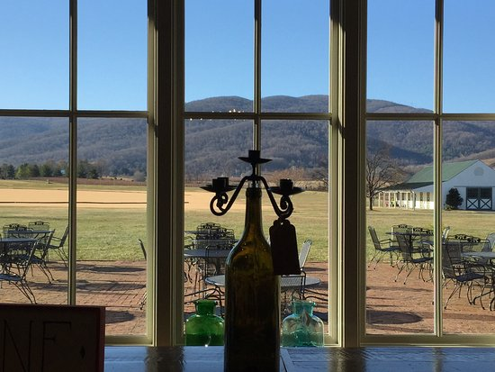 Crozet, VA: Beautiful view of the polo field.  7 is their delicious port-like wine