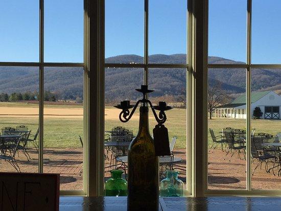 โครเซต, เวอร์จิเนีย: Beautiful view of the polo field.  7 is their delicious port-like wine