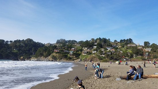 Muir Beach, CA: Fun day at the beach