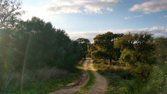 Casas Rurales Elanio Azul: Carril