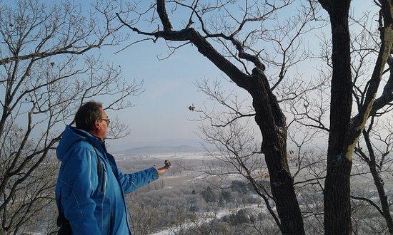 Gornyye Klyuchi, Russland: Вид со смотровой площадки