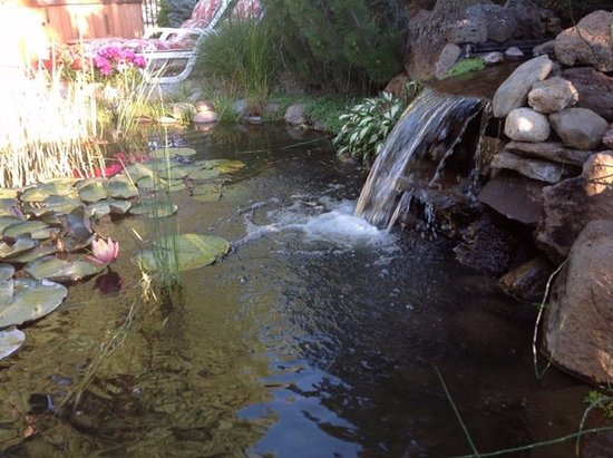 View of the pond at Sisters Motor Lodge -- a relaxing place to unwind after a fun day exploring.