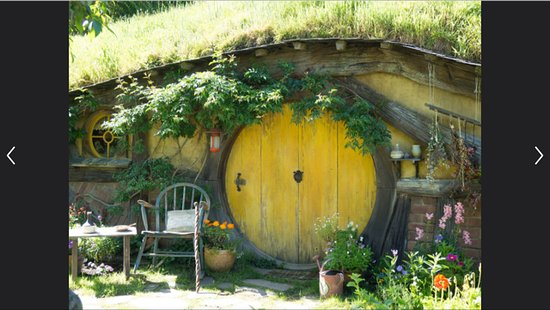 Gray Line New Zealand: So many hobbit holes!