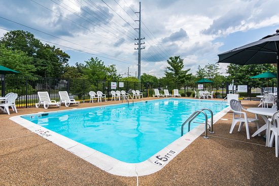 Quality Inn Manassas: Pool