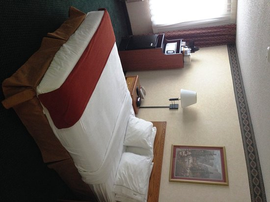 Holiday Inn Express Mishawaka: King Bed Guest Room
