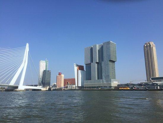 デロッテルダム