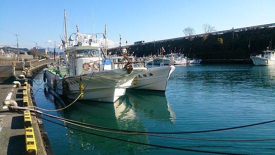 Yui Port