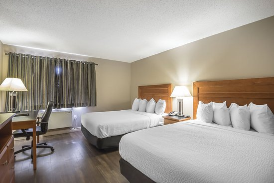 Quality Inn West Edmonton: Guest room