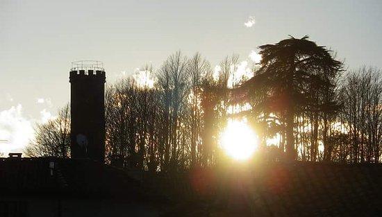 Castagnole Lanze, Italia: La torre da lontano e dall'interno
