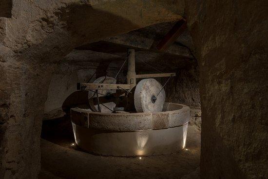 MOOM Museo dell'Olio di Oliva Matera