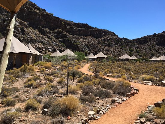 Sanbona Wildlife Reserve - Tilney Manor, Dwyka Tented Lodge, Gondwana Lodge: The view from our front door