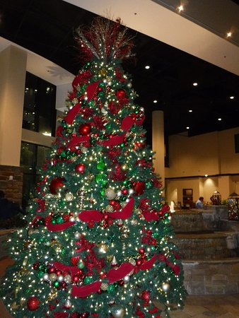 San Antonio Riverwalk Christmas.Christmas Tree In The Lobby Picture Of Embassy Suites By