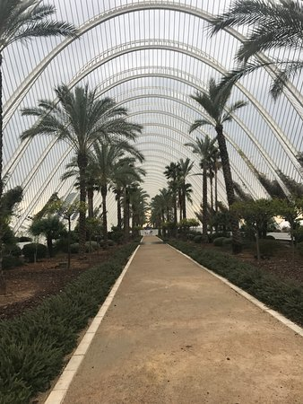 The top 10 things to do in valencia 2017 tripadvisor - Nice things valencia ...