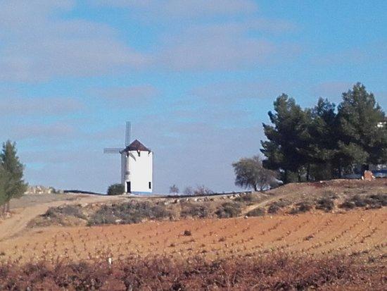 El Toboso, Ισπανία: 20161206_104823_large.jpg