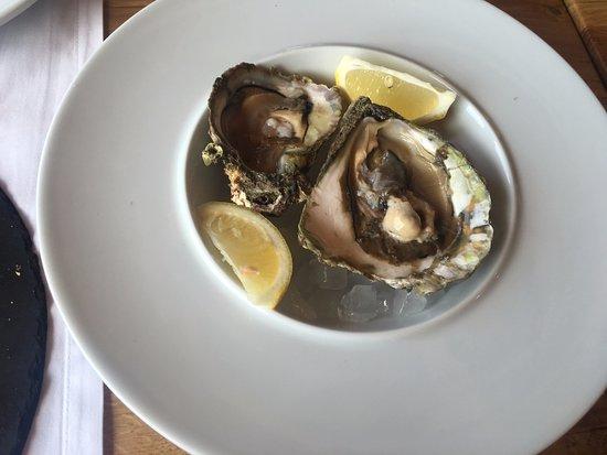 Hvar, Croacia: Oysters