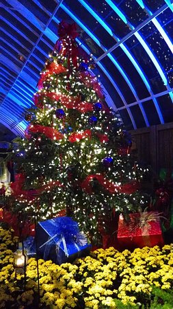 Phipps Conservatory: Phipps Christmas show