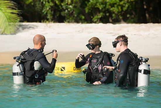 Petit St.Vincent: Jean-Michel Cousteau Dive Centre