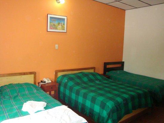 Hotel Las Nieves: Las sabanas y los cobertores estaban en mal estado, además tenía olores desagradables.