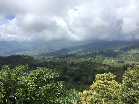 Baru, Costa Rica: View from our table