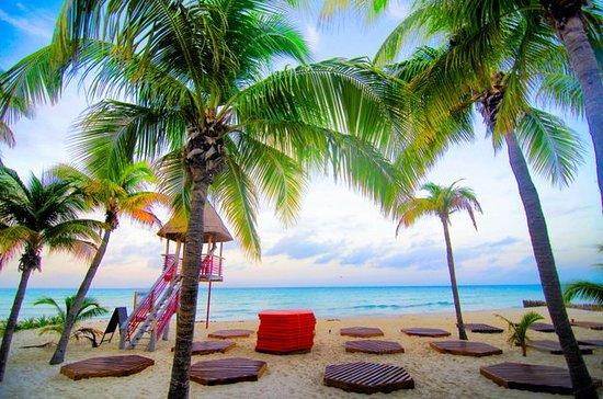 Na Balam Beach Hotel Isla Mexico Photos By