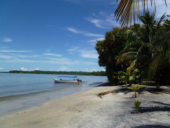 Valokuva: Playa Blanca