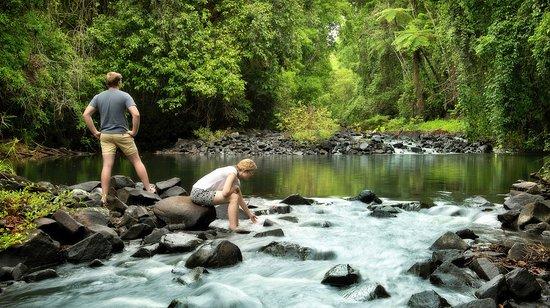 Sharlynn B&B: Enjoy a dip in the river. See the Platypus play