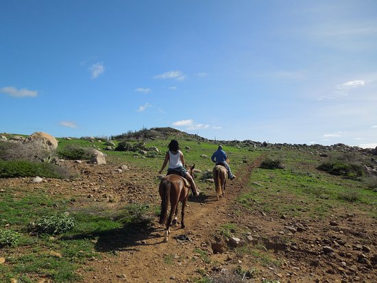 Paradera, Aruba: The Trail Back to the Stable